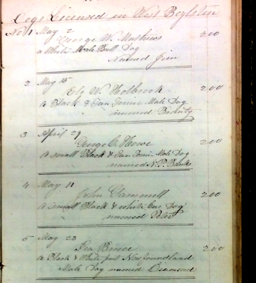Image of record of dog licenses from 1800s